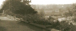 Darwin's Childhood Garden
